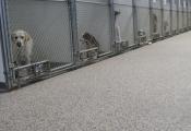 epoxy floors orange county